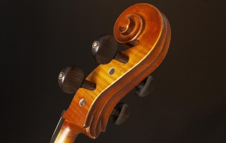 ce310 violoncelo eagle ce310 detalhe 03