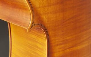 hce110 violoncelo eagle hce110 detalhe 01