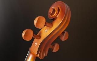 hce110 violoncelo eagle hce110 detalhe 04