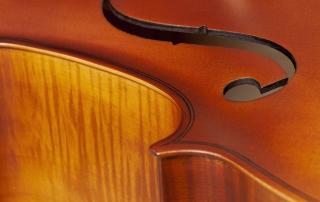 hce110 violoncelo eagle hce110 detalhe 05