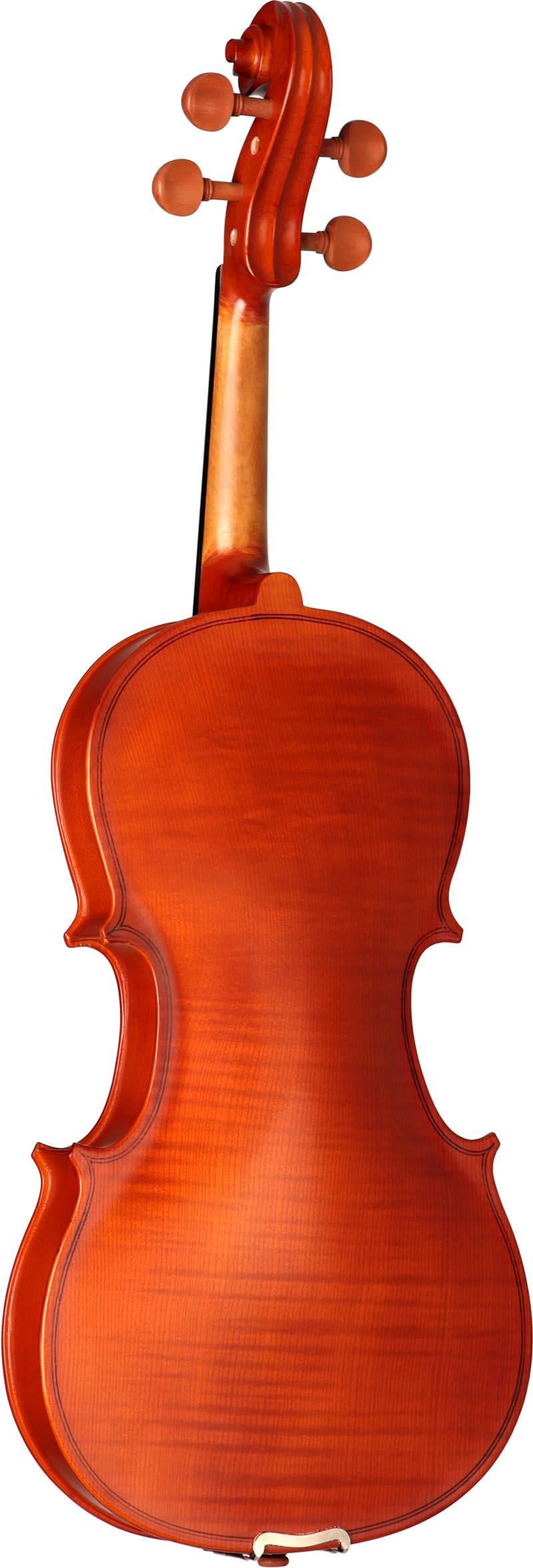 hva120 viola hofma hva120 visao posterior vertical