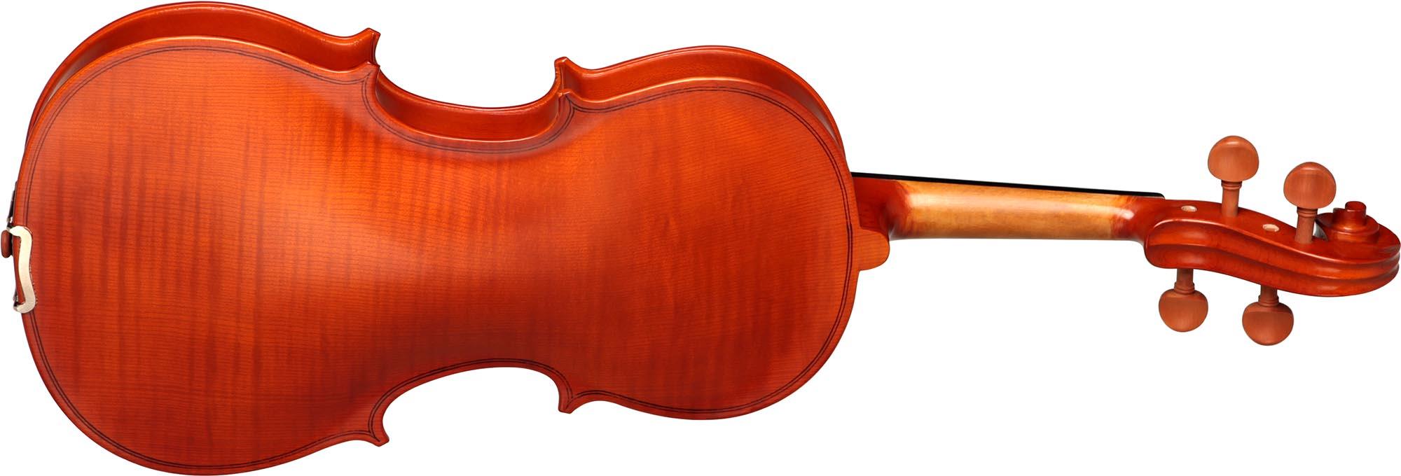 hva120 viola hofma hva120 visao posterior