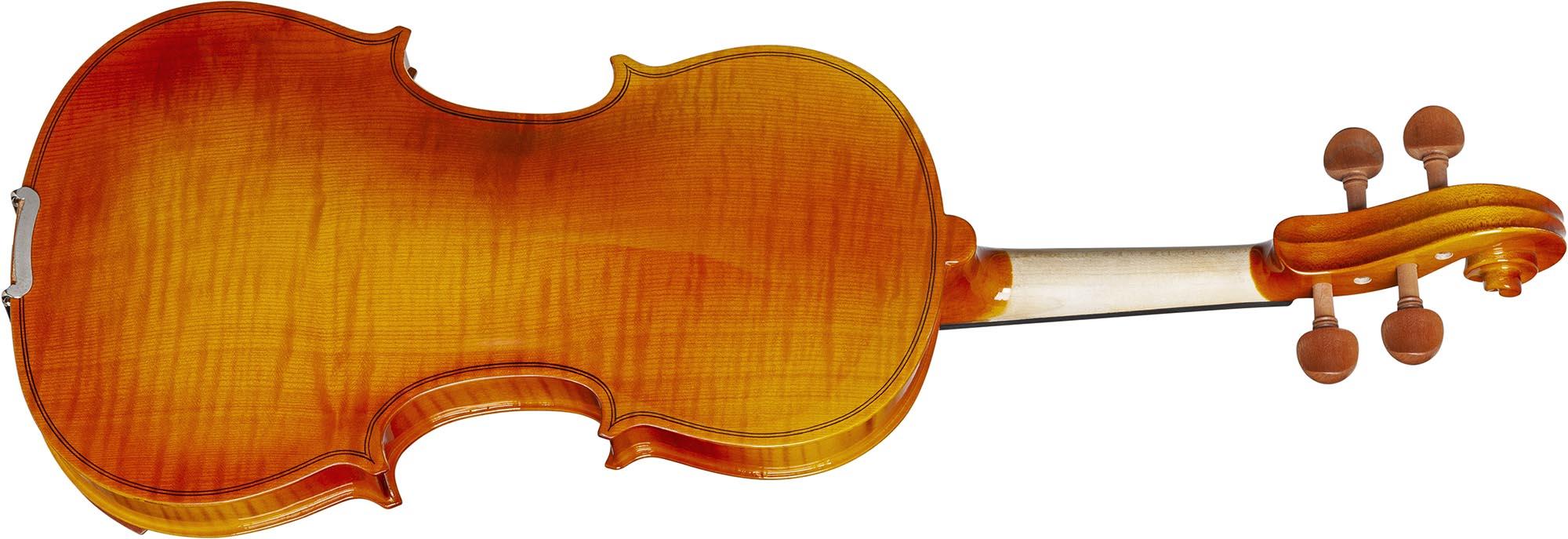 hve242 violino hofma visao posterior