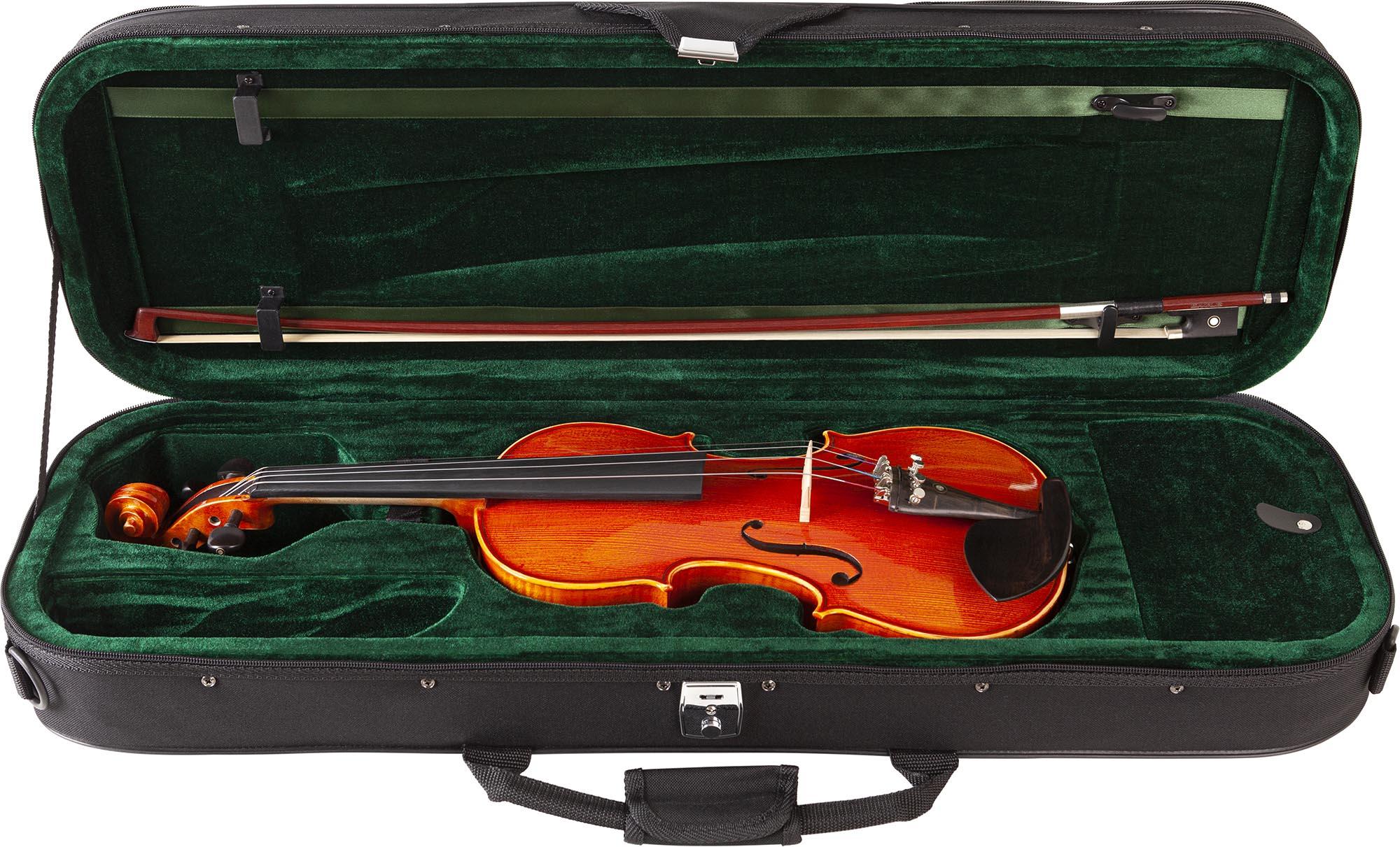 ve145 violino eagle ve145 estojo aberto