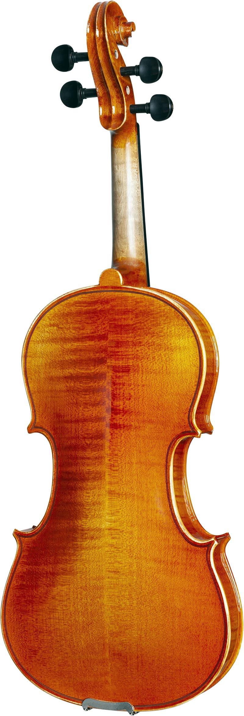 ve145 violino eagle ve145 visao posterior vertical