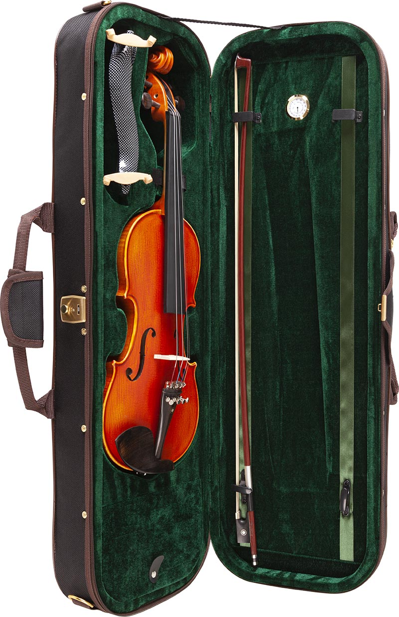 ve245 violino eagle ve245 estojo aberto vertical