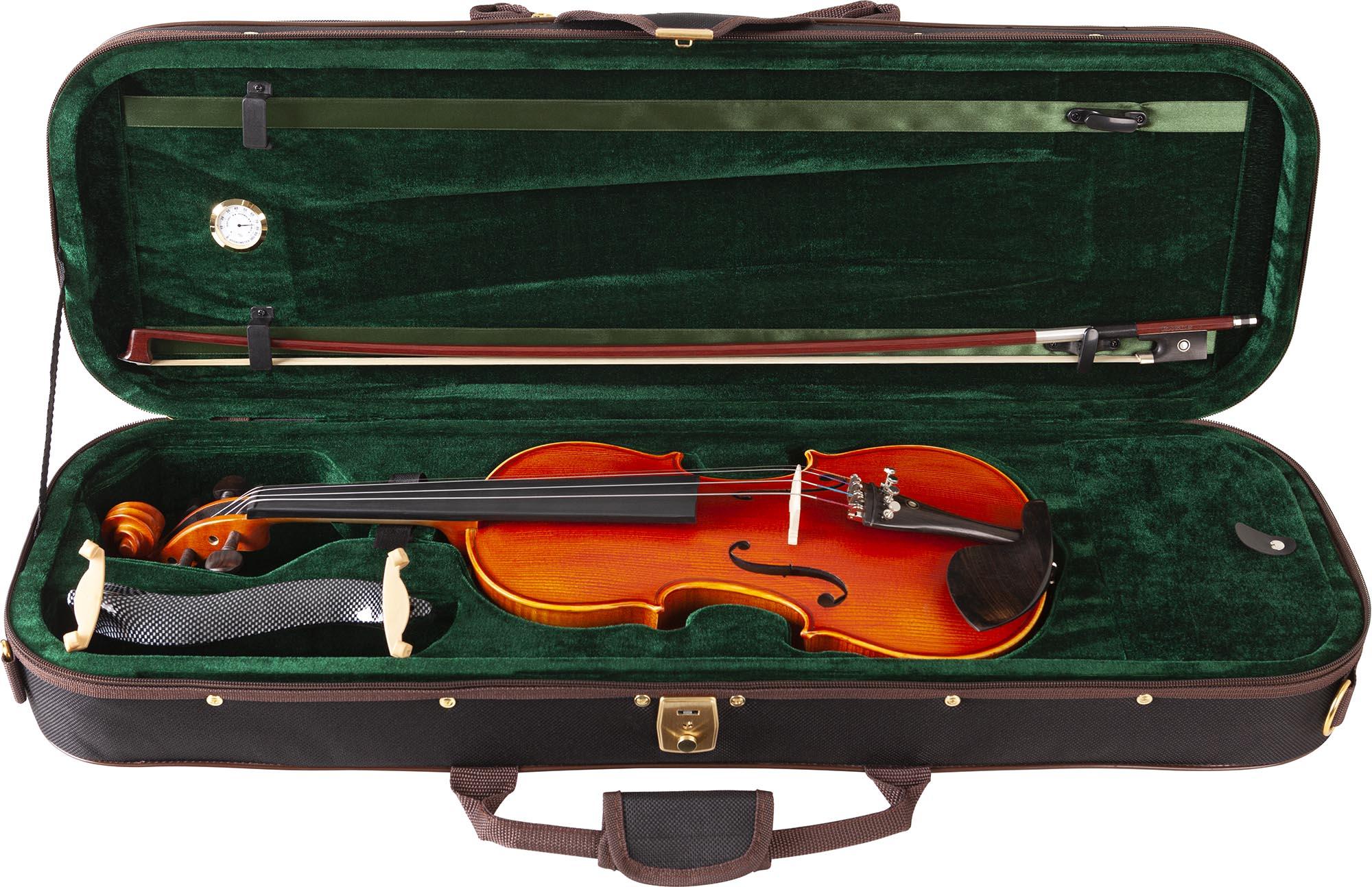 ve245 violino eagle ve245 estojo aberto