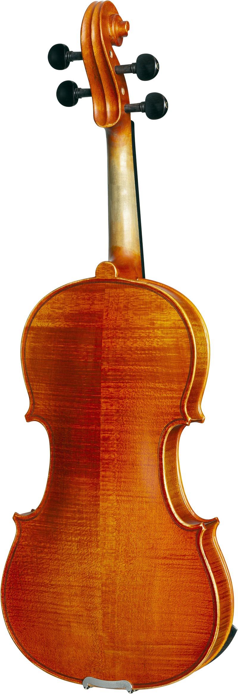 ve245 violino eagle ve245 visao posterior vertical