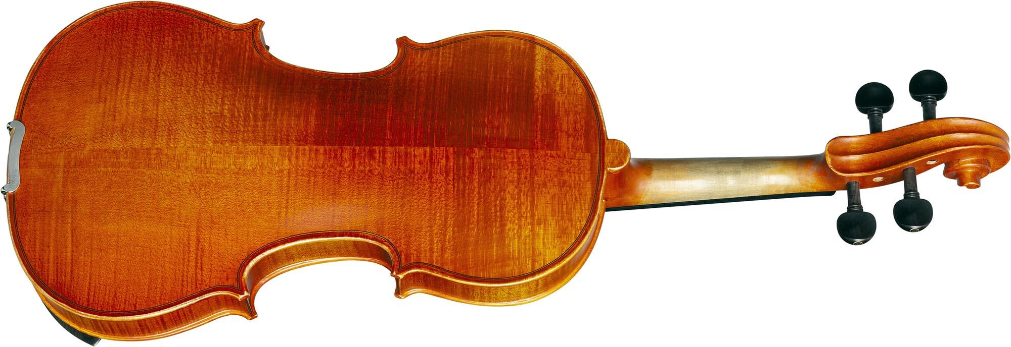ve245 violino eagle ve245 visao posterior
