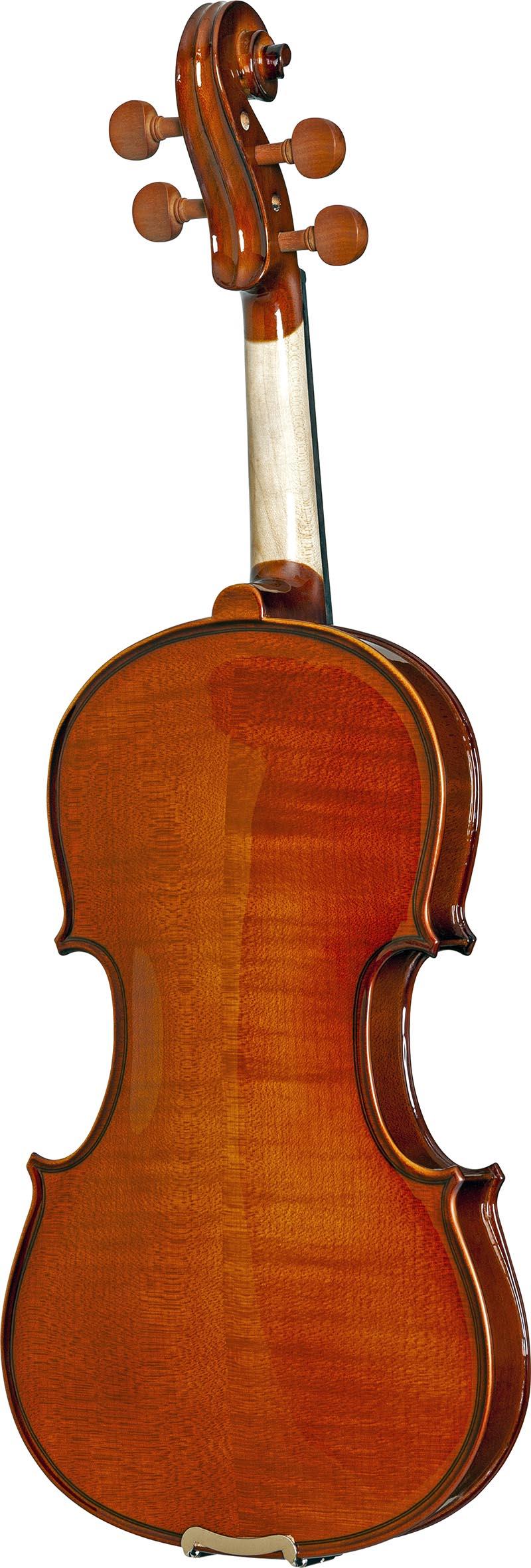 ve431 violino eagle ve431 visao posterior vertical