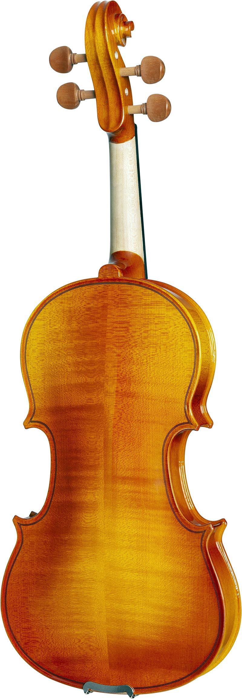 ve443 violino eagle ve443 visao posterior vertical
