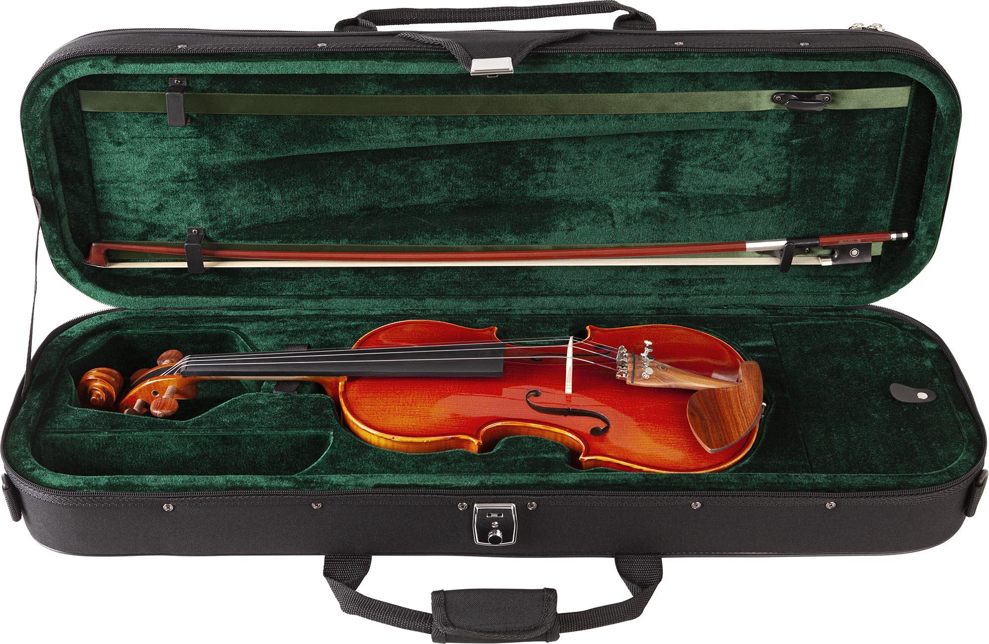 ve445 violino eagle ve445 estojo aberto