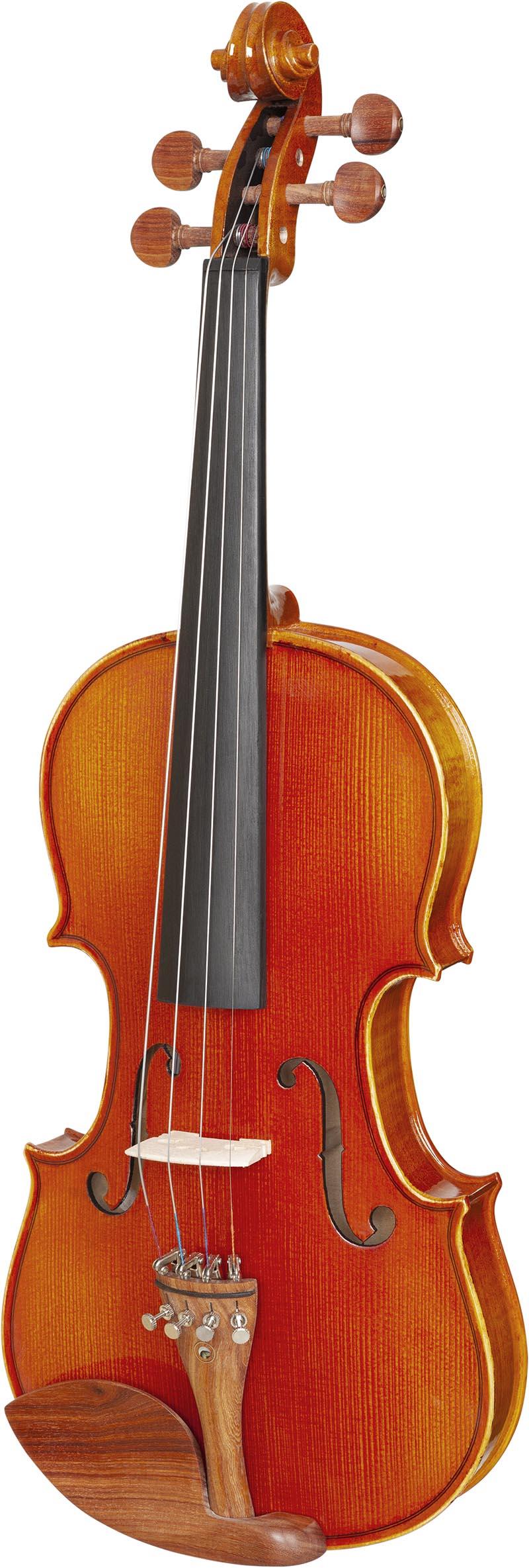 ve445 violino eagle ve445 visao frontal vertical
