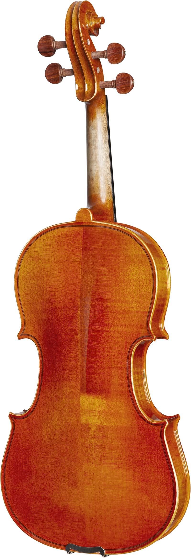 ve445 violino eagle ve445 visao posterior vertical