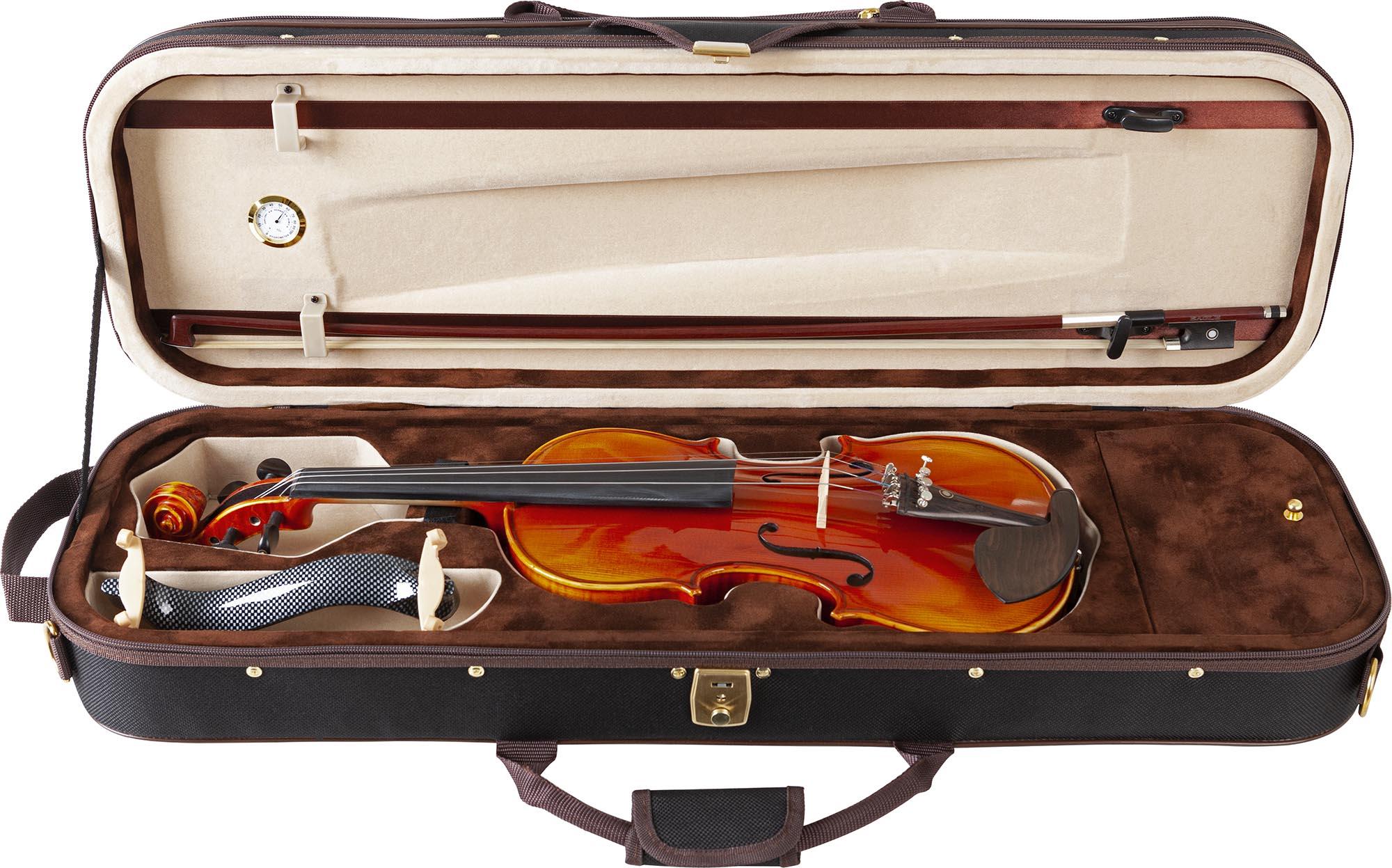 ve845 violino eagle ve845 estojo aberto
