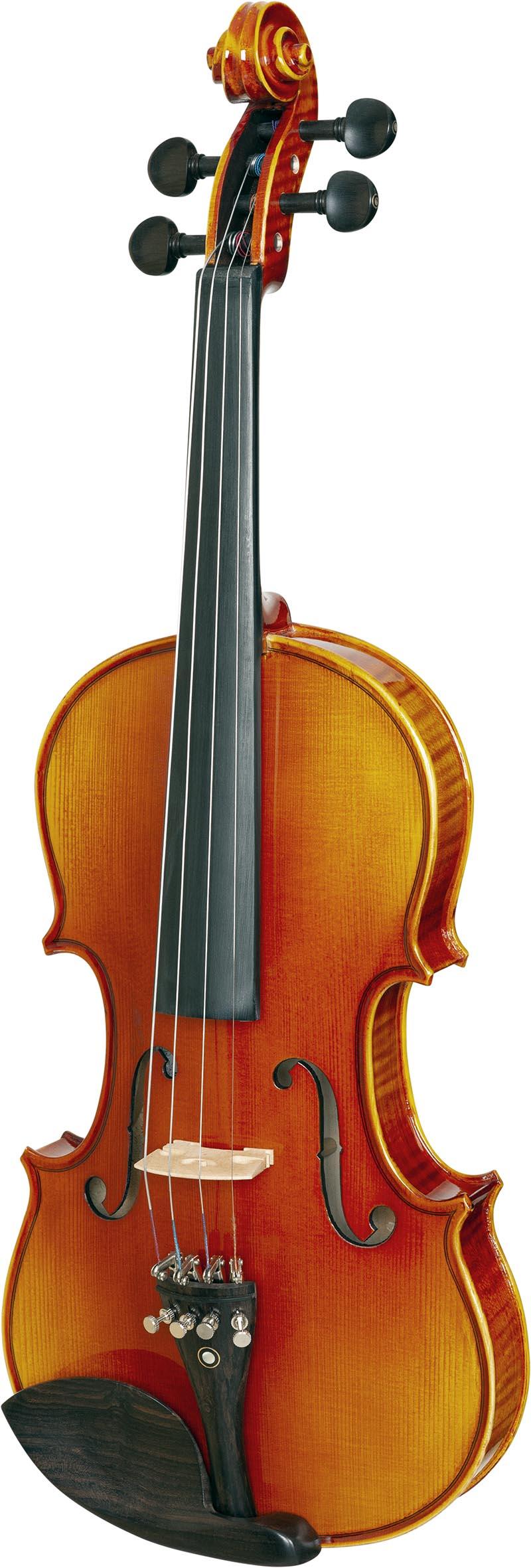 ve845 violino eagle ve845 visao frontal vertical