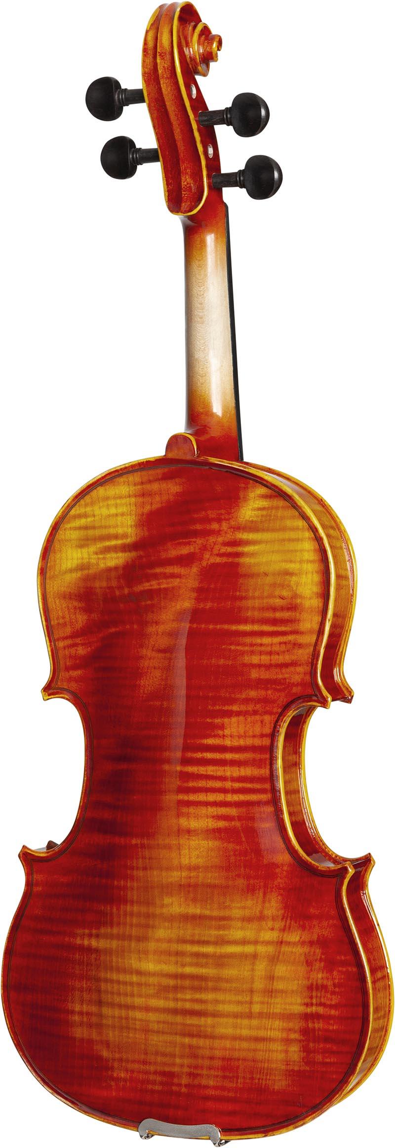 ve845 violino eagle ve845 visao posterior vertical