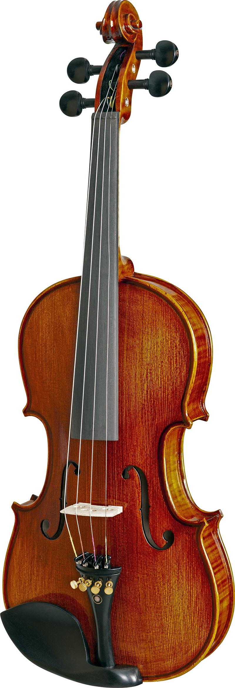 vk544 violino eagle vk544 visao frontal vertical